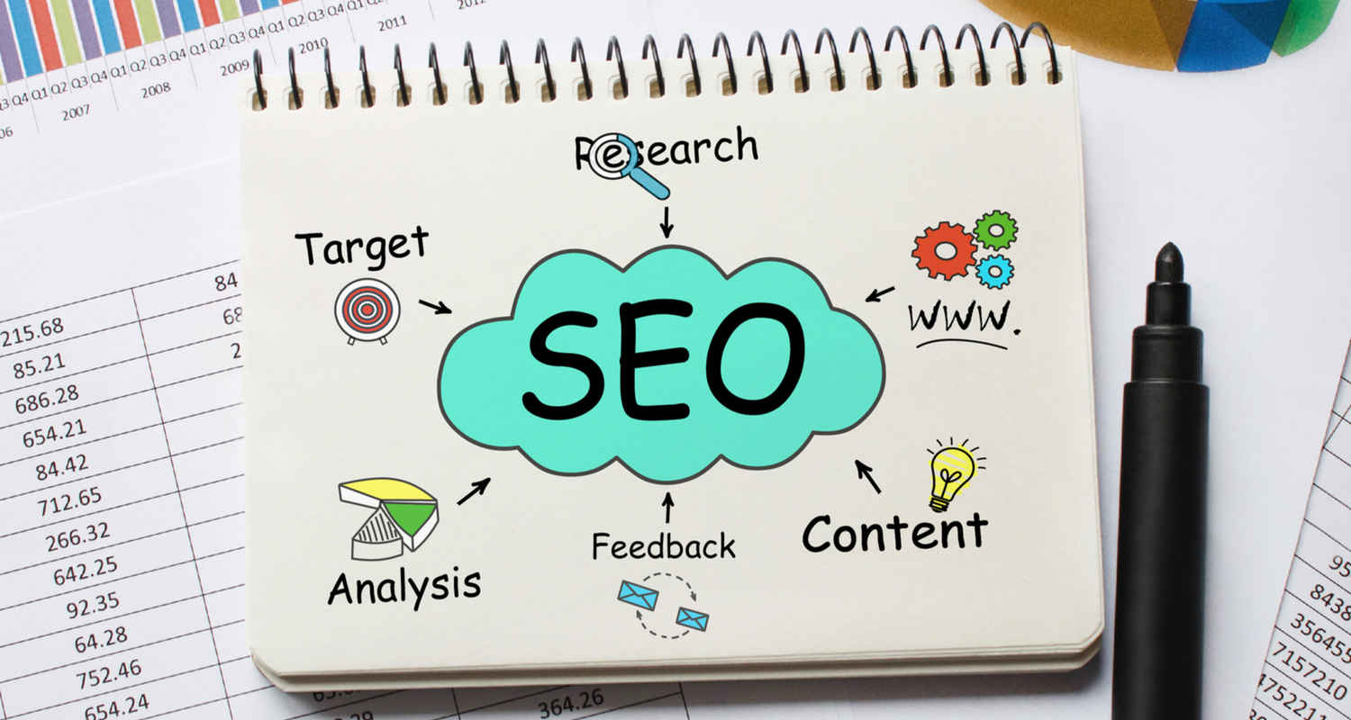 seo expections plan